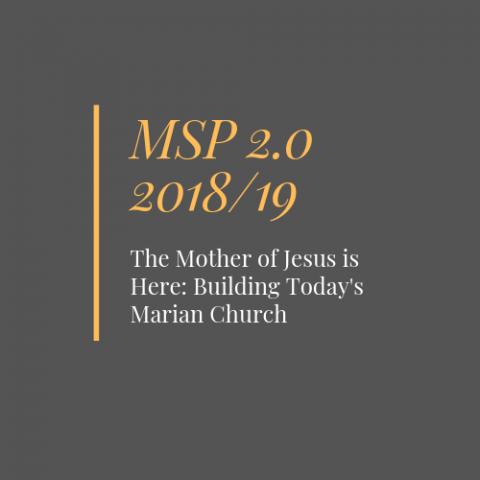 MSP 2.0 2018-2019